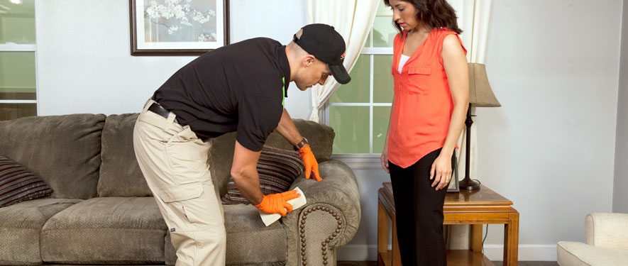 Monrovia, CA carpet upholstery cleaning